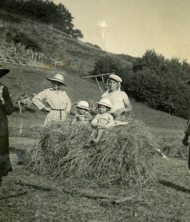 Aux Yolettes, scène de fenaison