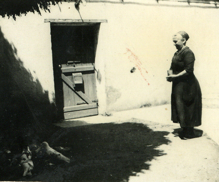 La fermière et ses pigeons