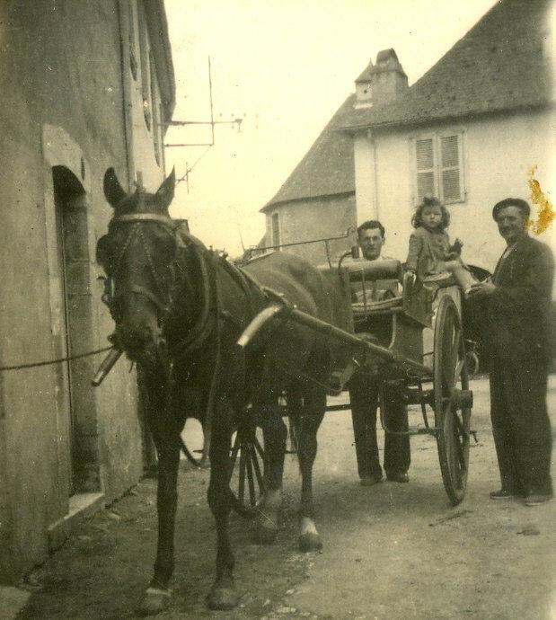 Avant l'auto, la voiture à cheval